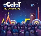 OCOLOT - You Live in a Zoo