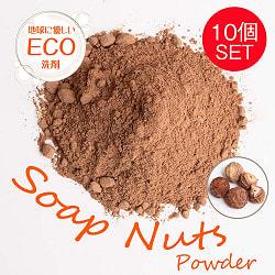 【10個セット】ソープナッツ - インドの天然エコ洗剤&石鹸(Aritha Powder)[250g]