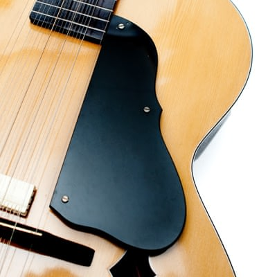 インドのスライド・ギター モハーンヴィーナの個別写真