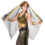 ベリーダンス・アラビアン衣装 - トップス&パンツ・アクセ・ベールセットの個別写真