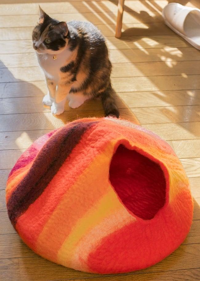 ネパールフェルトのキャットハウス オレンジ&ボーダー2-ベッドになったりざぶとんになったり、いろいろな遊び方をしてくれます。\