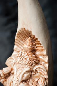 トゥースガネーシャ ホワイト[21cm]の個別写真