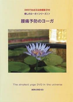 DVDでおぼえる赤根彰子の癒しのヨーガ 腰痛予防のヨーガ