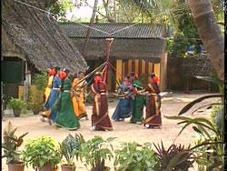 Kummi | Pinnal Kolattam | Bharatanatyam | Karagam | kavadi | Poikkal Kudirai | Oyillattam | Odissi 2 -