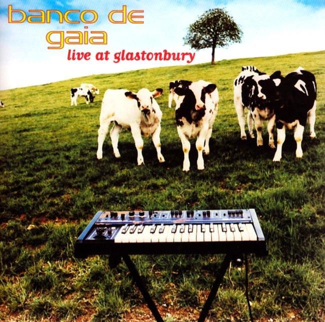 benco de gaia - live at glastonburyの写真