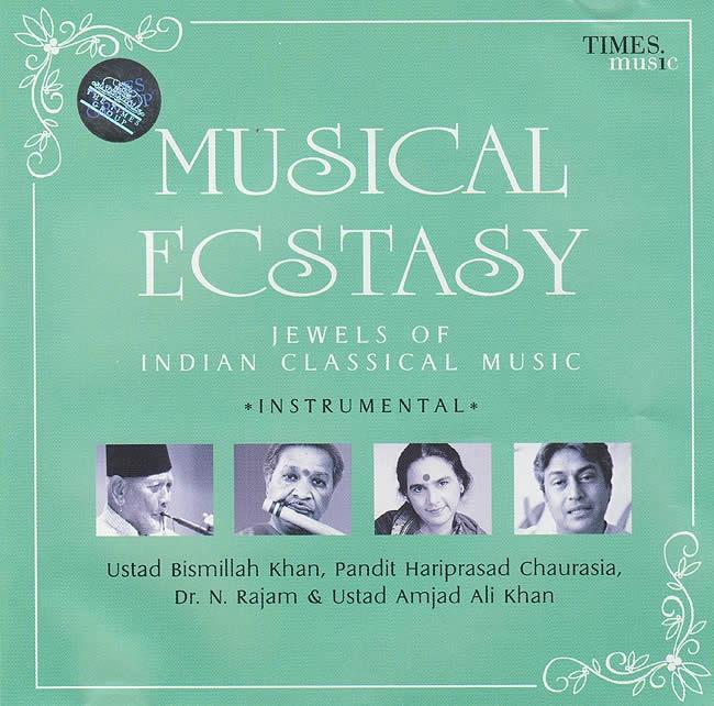 MUSICAL ECSTASY-Instrumentalの写真1