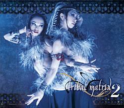 V.A. - Tribal Matrix 2の写真1
