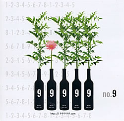 no. 9 - 9 - 9 - 9 - 9 - 9の写真