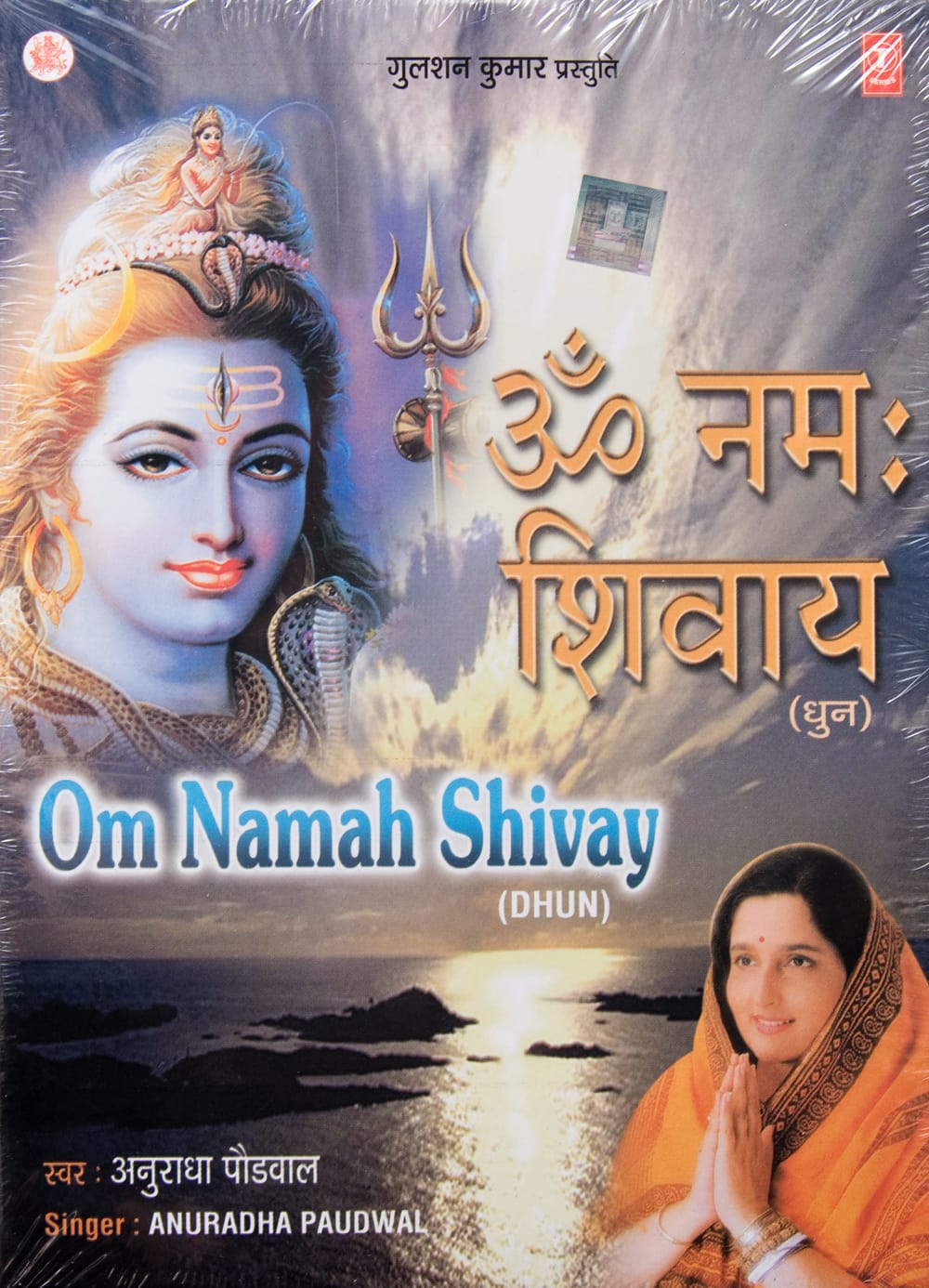 Om Namah Shivay(Dhun)の写真