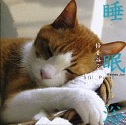 睡眠浴の写真