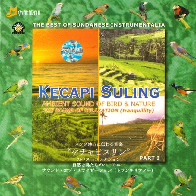 KECAPI SULING PART 1の写真