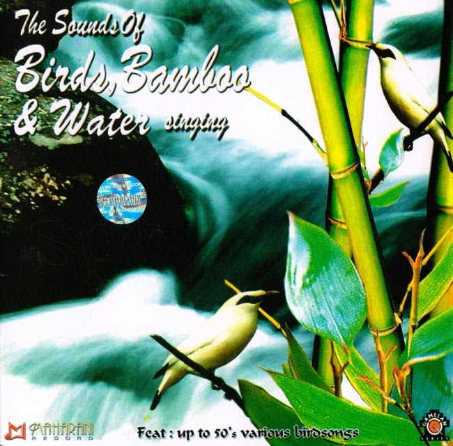 The Sound of Birds,Bamboo and Waterの写真
