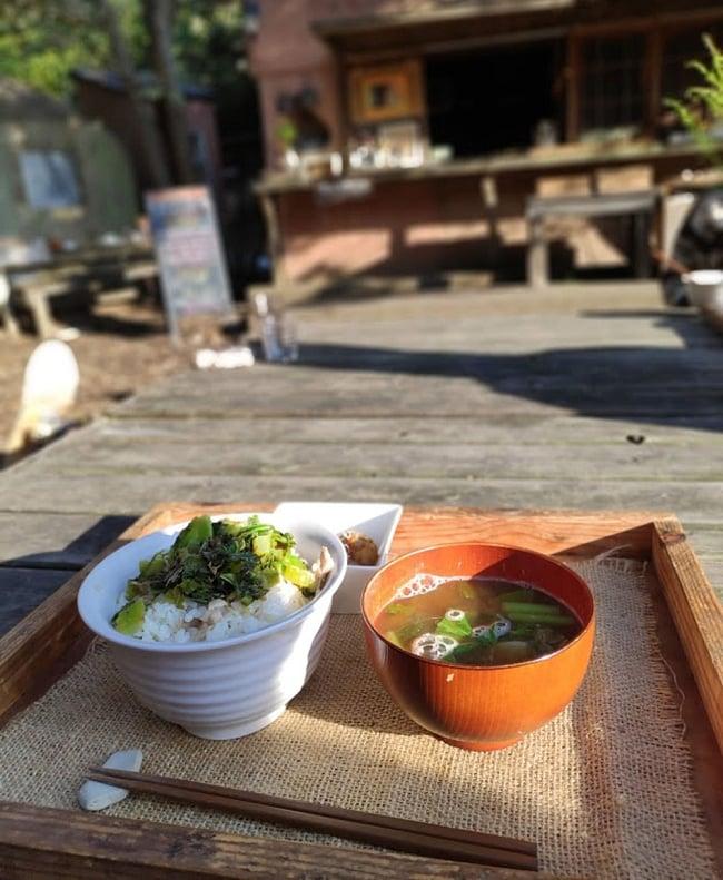 [E-TICKET]森のインド古典会 - Forest and Indian Music - 10月14日(月・祝) 5 - 手作りで無農薬無化学肥料の野菜のみを使用したご飯が美味しいです