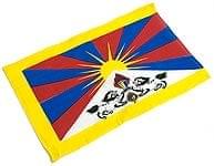 チベットの国旗-小[38cm x 23.5cm]