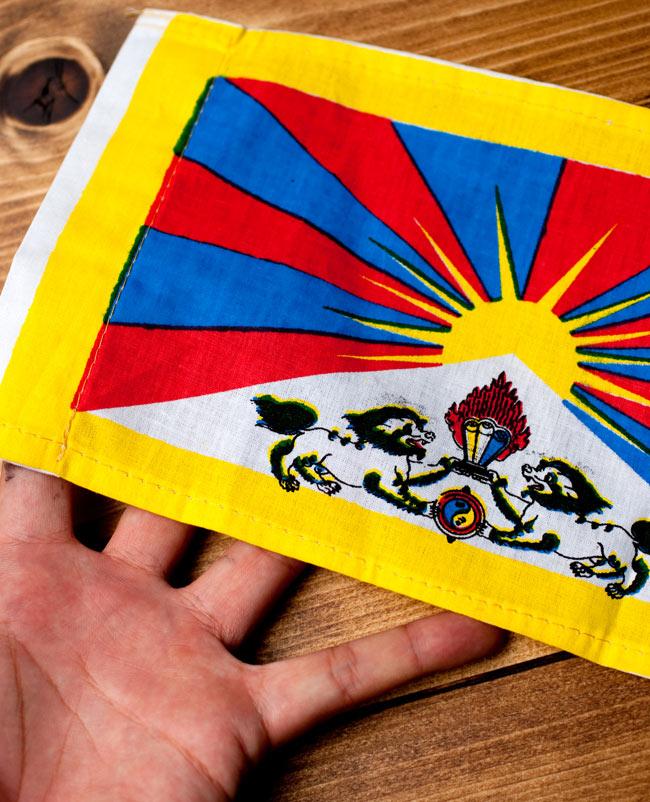 チベットの国旗-ミニ[23cm x 14cm] 4 - そこまで大きいわけではありませんが、存在感のある旗です。