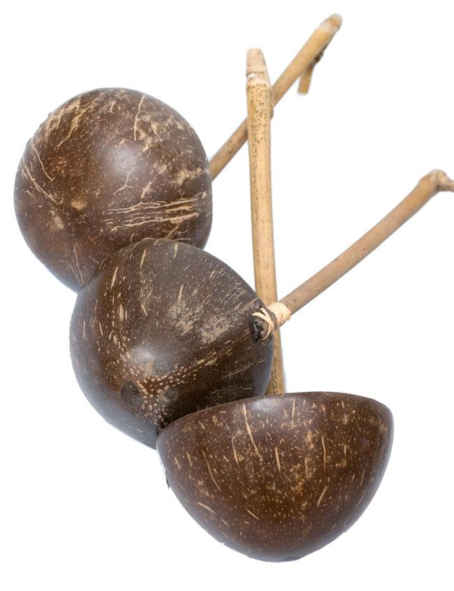 ココナッツのお玉 7 - 天然素材を用いていますので、大きさや形がみんな異なります。