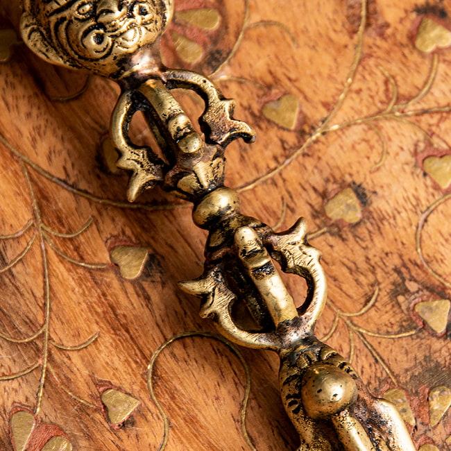 プルパ(キーラ・金剛蕨)[13.5cm] 3 - 裏面の写真です