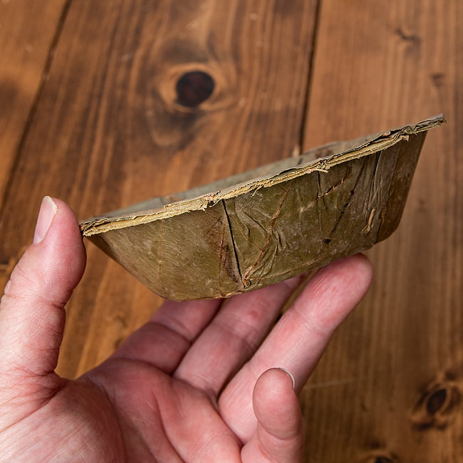 【約25枚セット】インドのリーフプレート ミニボウル 直径13.5cm 6 - 手に取るとこれくらいのサイズ感です。