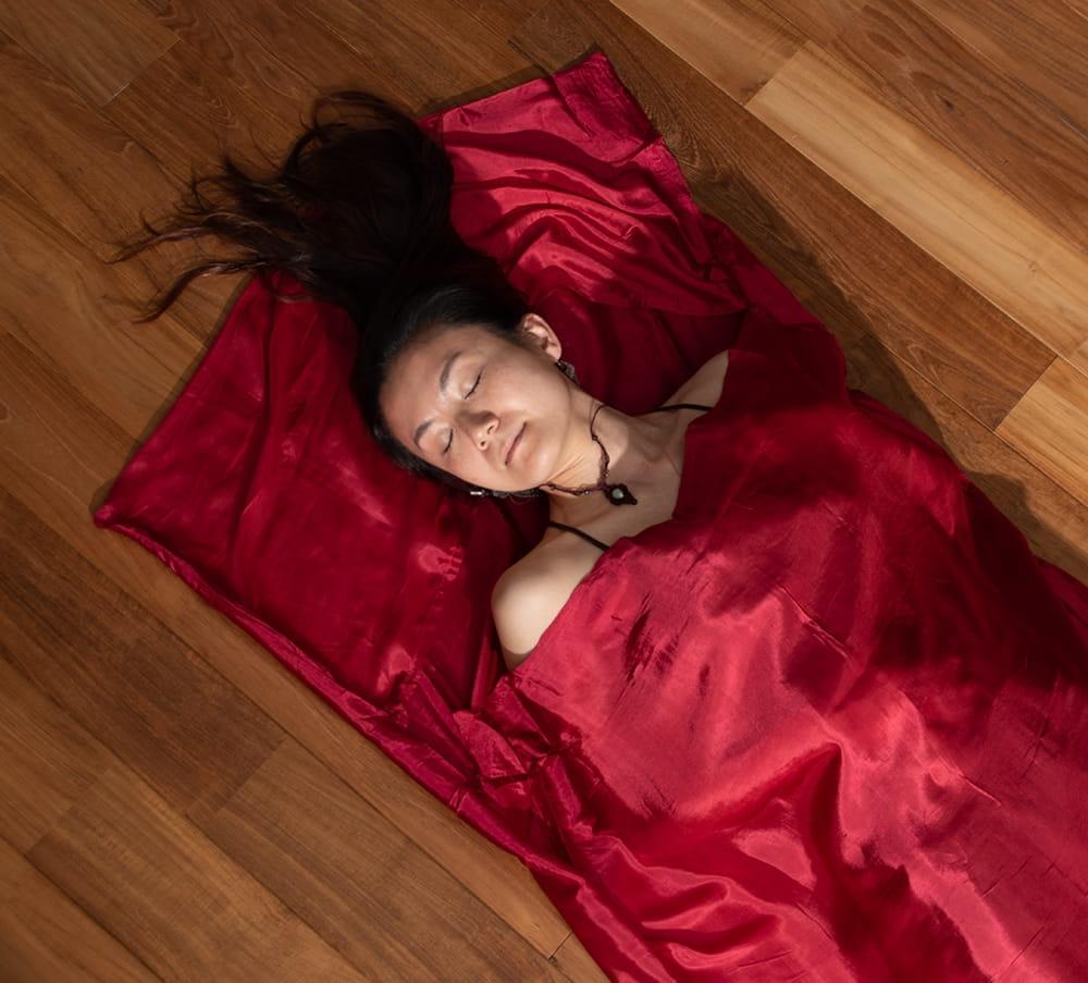 ベトナムのシルク寝袋[シングルサイズ] 4 - シルクなので光沢がありますね