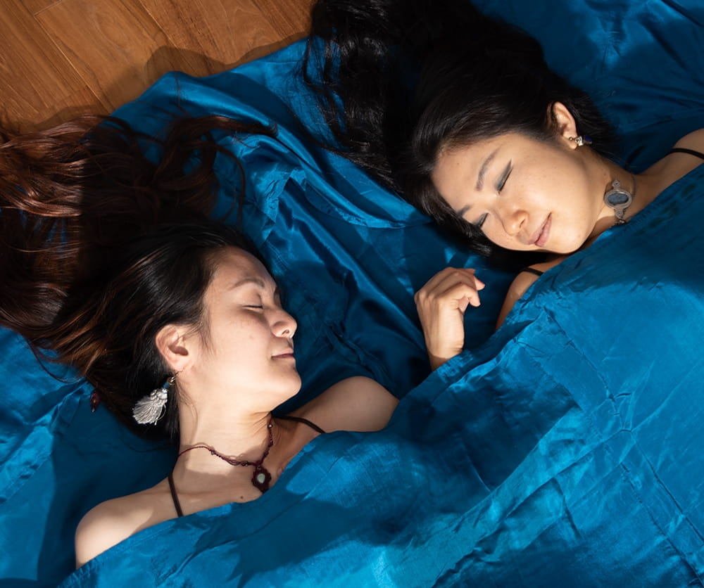 ベトナムのシルク寝袋[ダブルサイズ] 2 - 光沢があるシルク素材です
