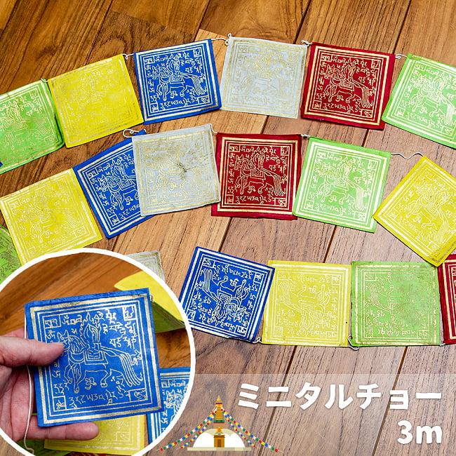 ロクタ紙タルチョー (小)の写真