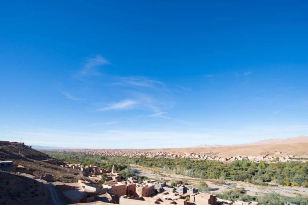 メヘンディ - Indy Herbsヘナパウダー - Sahara - モロカンヘナ 5 - モロッコのヘナ畑は雄大な景色の中にありました