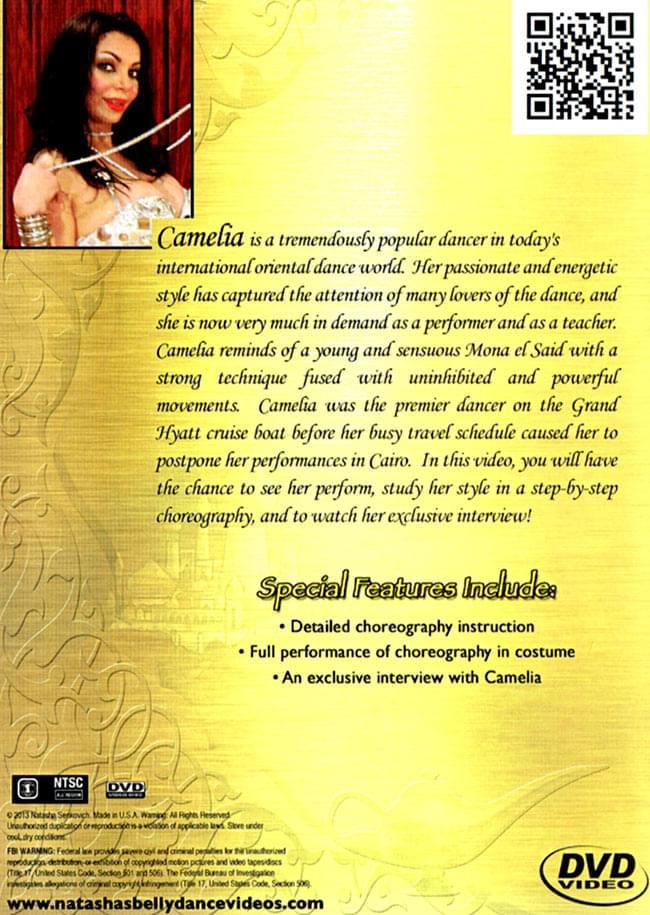 [DVD]Masters of Egyptian Choreography Vol.7 - Camelia 2 - 裏面のジャケットです