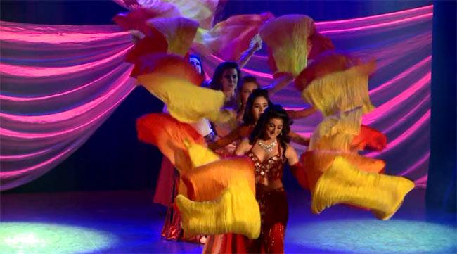 【2枚組】Cairo Nights at Beyond the Stars Palace Theater - Dr. Samy Farag 4 - DVDの内容はこんな感じです