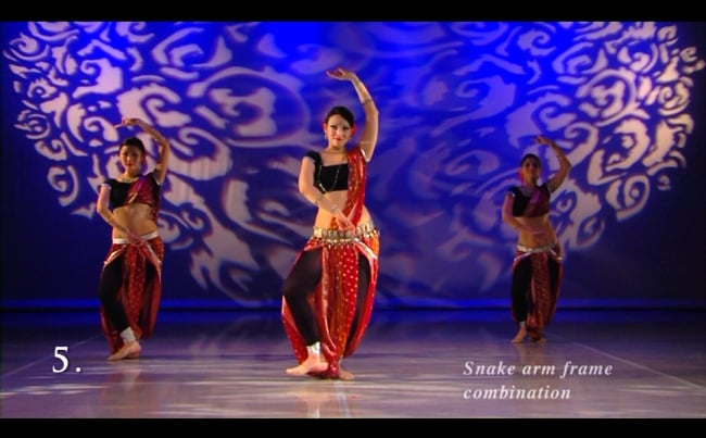 The Sculpted Blossom - Classical Indian Dance Belly Dance Fusion[DVD]の写真4 -