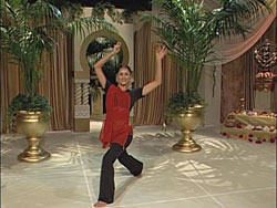 Dances of India - Ancient to Modern with Meera 3 -