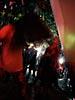 dance_of_shiva2012_keita_005