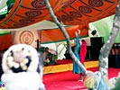dance_of_shiva2012_keita_110