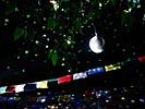 dance_of_shiva2012_keita_162