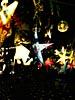 dance_of_shiva2012_keita_165