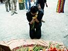 dance_of_shiva2012_keita_267