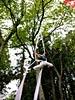 dance_of_shiva2012_keita_304