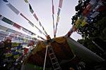 dance_of_shiva2012_kousei_070