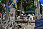 dance_of_shiva2012_kousei_224