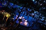dance_of_shiva2012_kousei_236