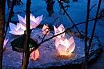 dance_of_shiva2012_kousei_237
