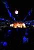 dance_of_shiva2012_kousei_255