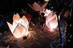 dance_of_shiva2012_kousei_329