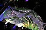 dance_of_shiva2012_kousei_337