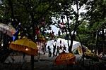 dance_of_shiva2012_kousei_382