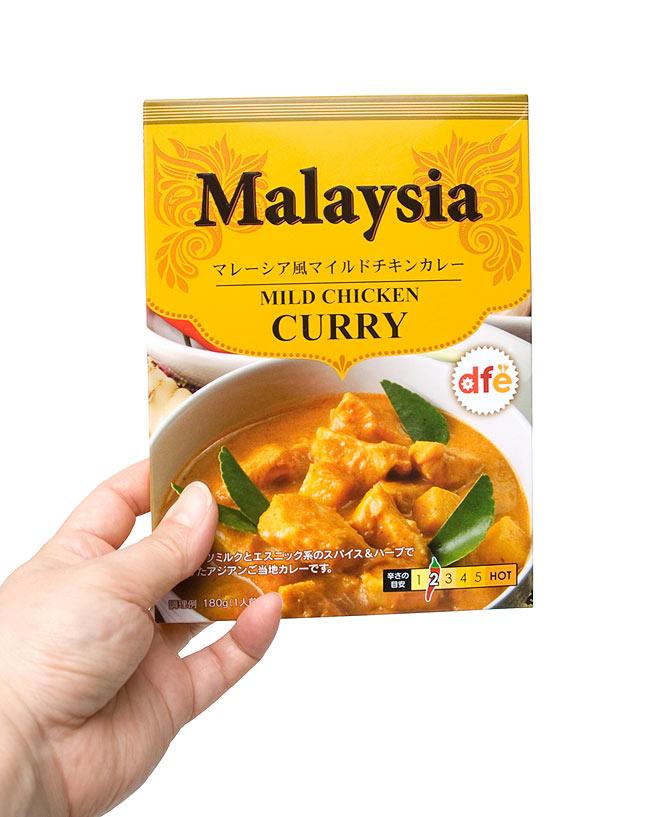 マレーシア風 マイルドチキンカレー 【dfe】 3 - 同シリーズ、同サイズの商品を手に持ってみました