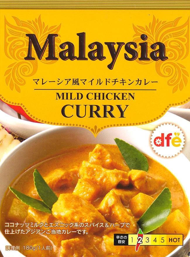 マレーシア風 マイルドチキンカレー 【dfe】の写真
