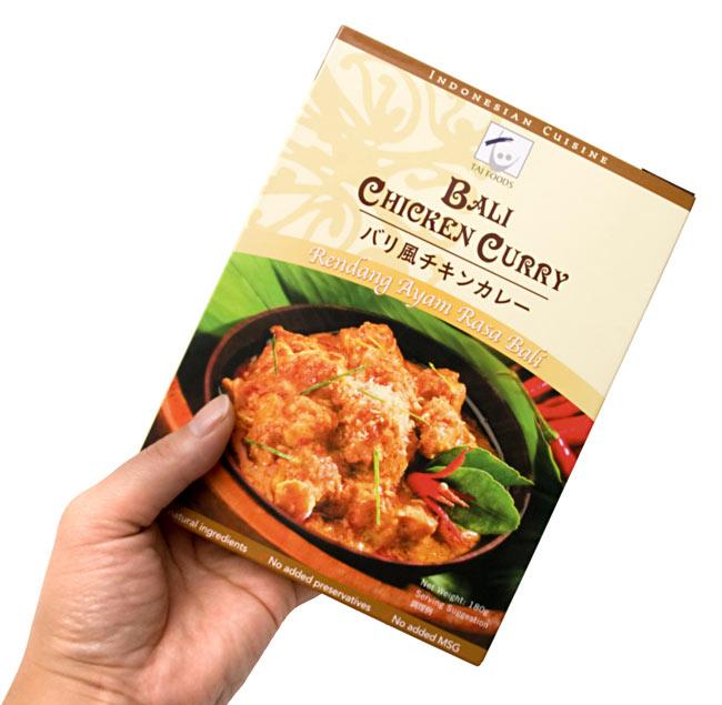 ジャワ風 ココナッツ チキン カレー 【dfe】 3 - 同シリーズ、同サイズの商品を手に持ってみました