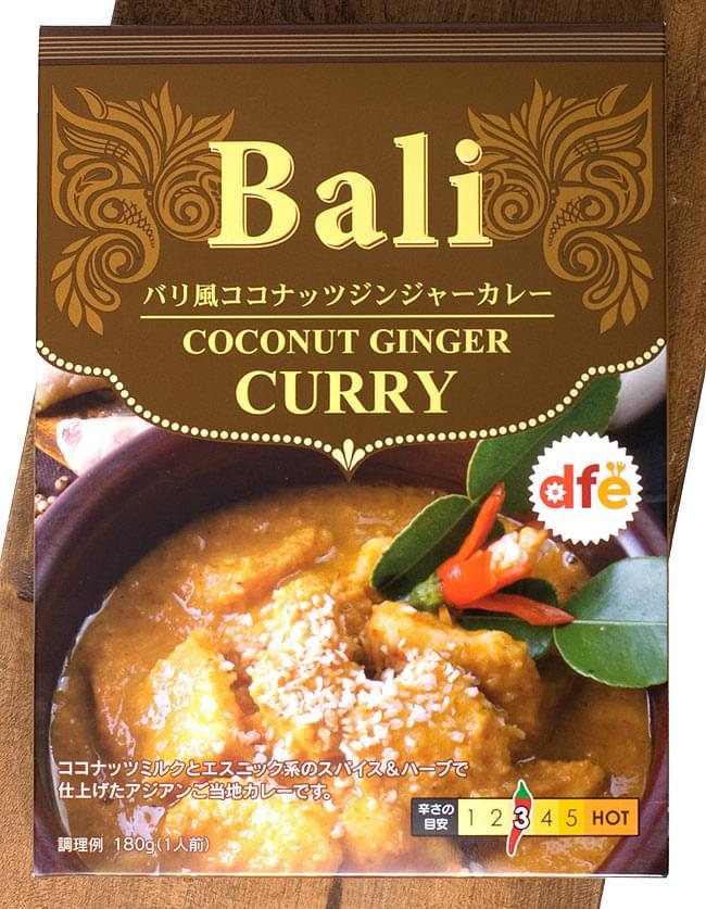 バリ風 ココナッツ ジンジャー カレー 【dfe】の写真