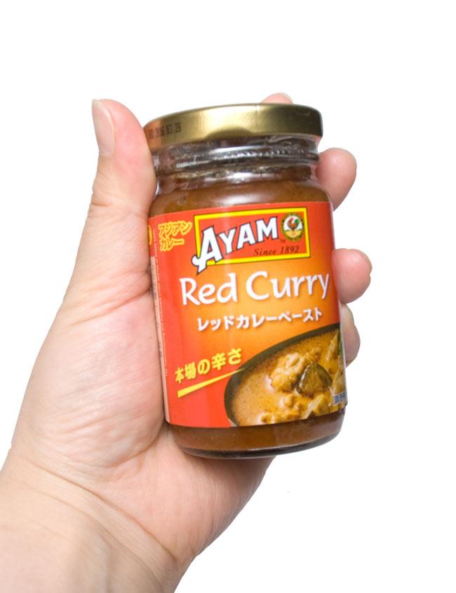 タイ レッドカレー ペースト - Thai Red Curry Paste 【AYAM】の写真4 -