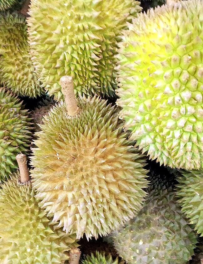 ドリアン ジャム- Durian Jam 【Mariza】 2 - ドリアンです。アジアに行けば、市場や道端でうず高く積み上げて売っていますよ。どんな味と香りでしょうか?